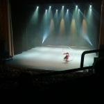 Rode Hond 2018 - Circusshow